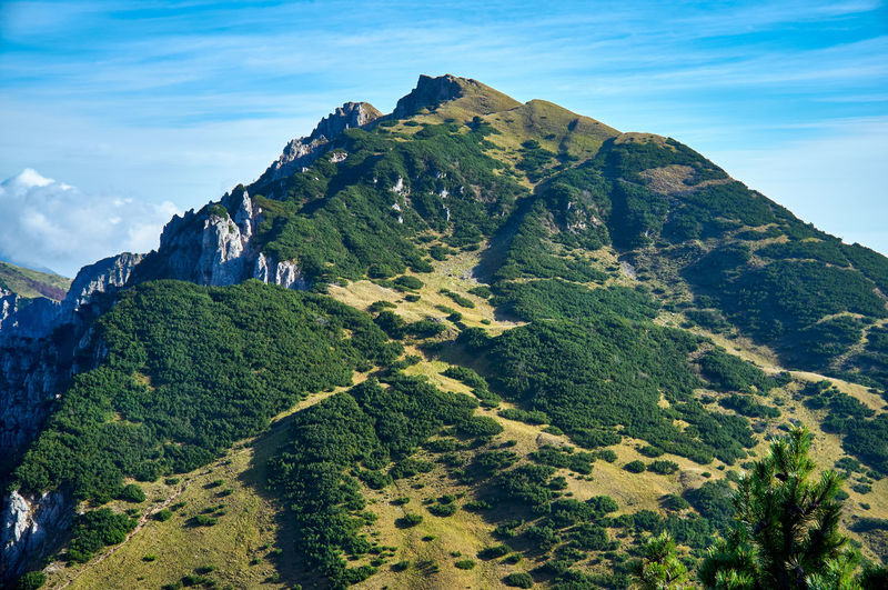 Summer panorama of mount gramolon. mont gramolon is part of the tre croci chain, in italy