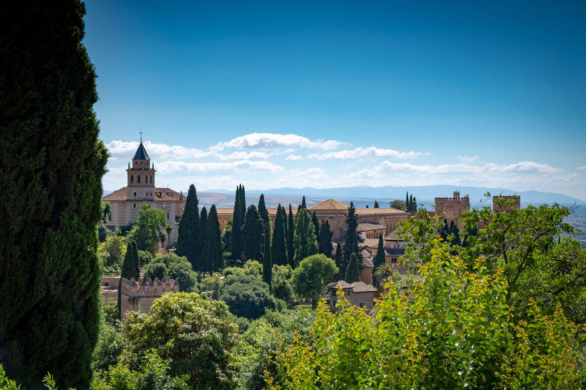 Alhambra (Granada) Alhambra De Granada  Granada Granada, Spain Alhambra Architecture Belief Building Building Exterior Built Structure Day Green Color Growth History Nature No People Outdoors Place Of Worship Plant Religion Sky Spire  The Past Tower Travel Destinations Tree