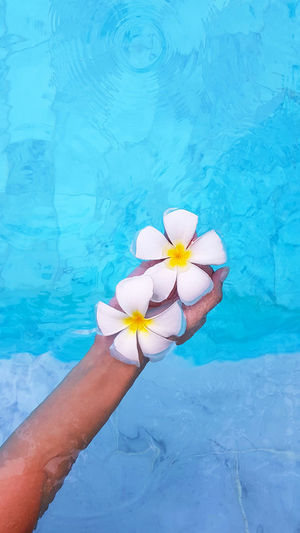 High angle view of woman hand by swimming pool
