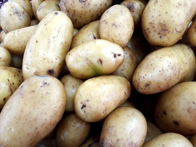 At the market Food Staple Supermarket Raw Potato Market Healthy Lifestyle Full Frame Vegetable Business Finance And Industry Backgrounds Retail  For Sale Farmer Market Retail Display Carbohydrate - Food Type Potato Raw Food