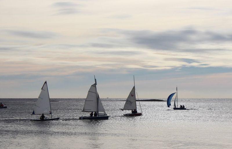 EyeEm Selects Sailboat