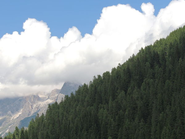 Beauty In Nature Cloud - Sky Day Forest Growth Lago Di Calaita Mountain Nature No People Outdoors Range Scenics Sky Tree