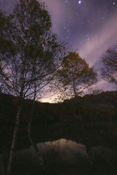 今週は晴れて星い~😂😂😂😂 Tree Star - Space Nature Sky Beauty In Nature Galaxy Dark Night Outdoors 銀河鉄道の夜♪おはよう~😊