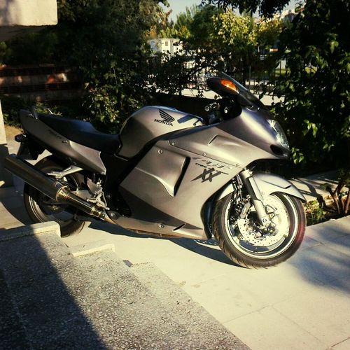 Honda Cbr 1100 Love♥