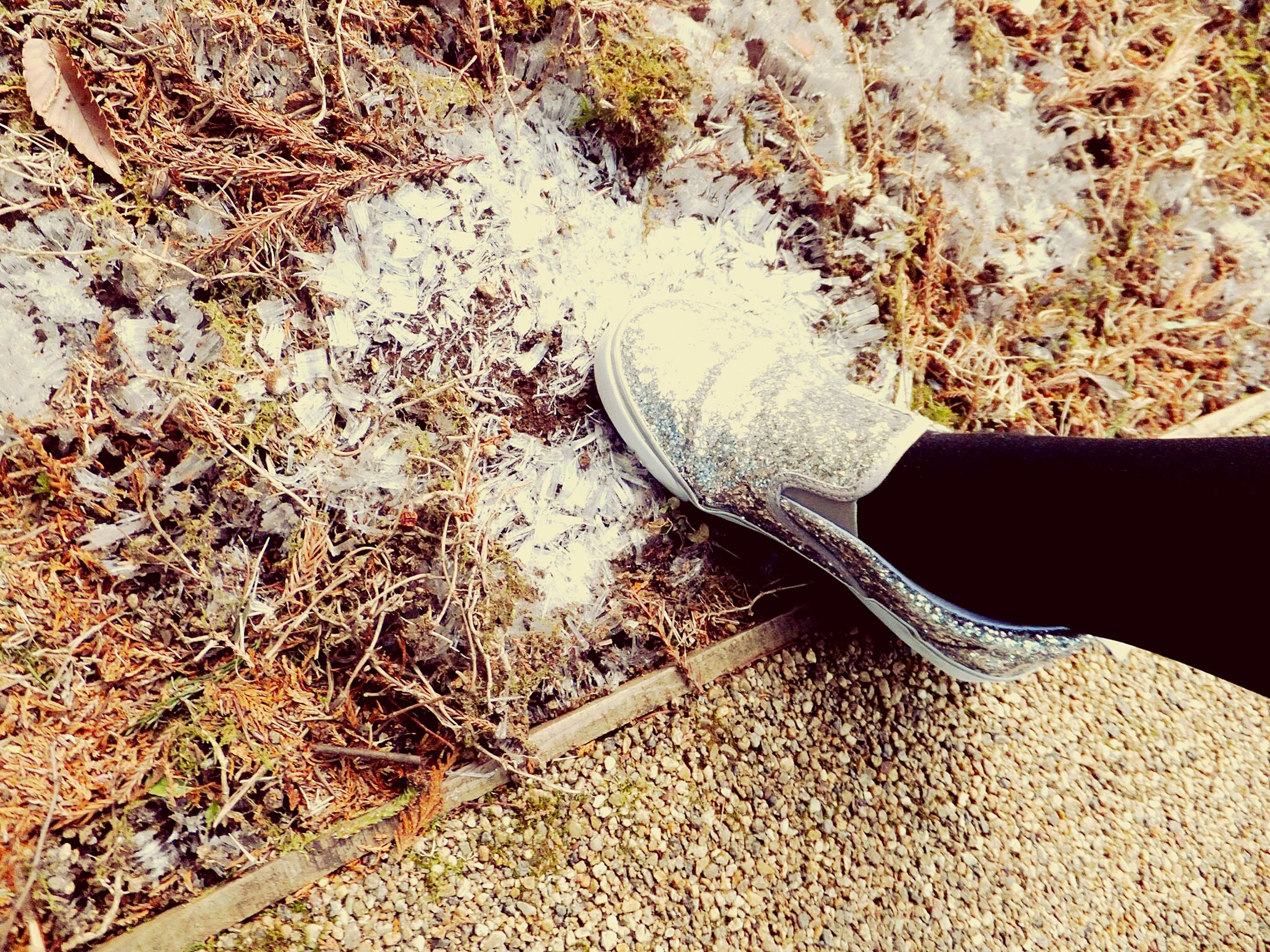 high angle view, low section, personal perspective, shoe, nature, sand, tranquility, person, outdoors, day, sunlight, part of, one person, field, dry, plant, water, shadow, close-up