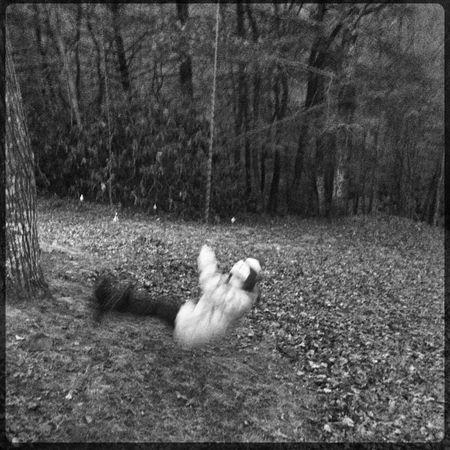 Blackandwhite Blurred Motion Fun Outdoors Swinging