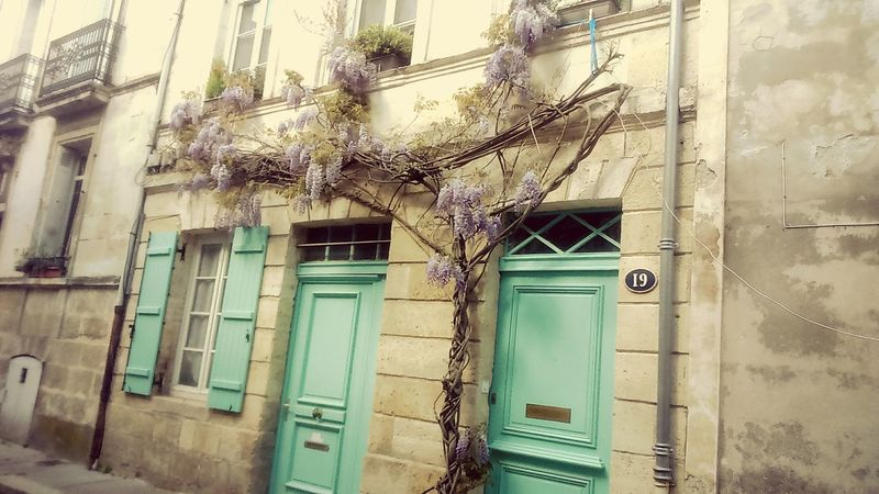 Les Chartrons Maison charmante Charming Place Old House Hidden Gems  My Year My View