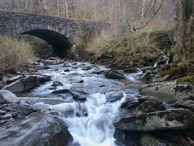 Smokey Mountains Running Water Creek Water Old Bridge National Park Fall Time Off Road Pulled Over East Tennessee Outdoors Outdoor Photography