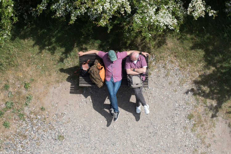 High angle view of friends sitting on bench against trees