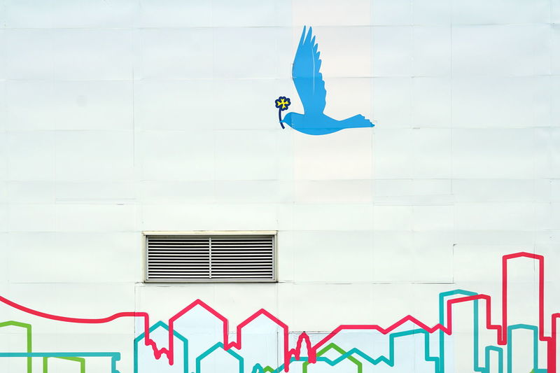 Low angle view of a bird flying against building