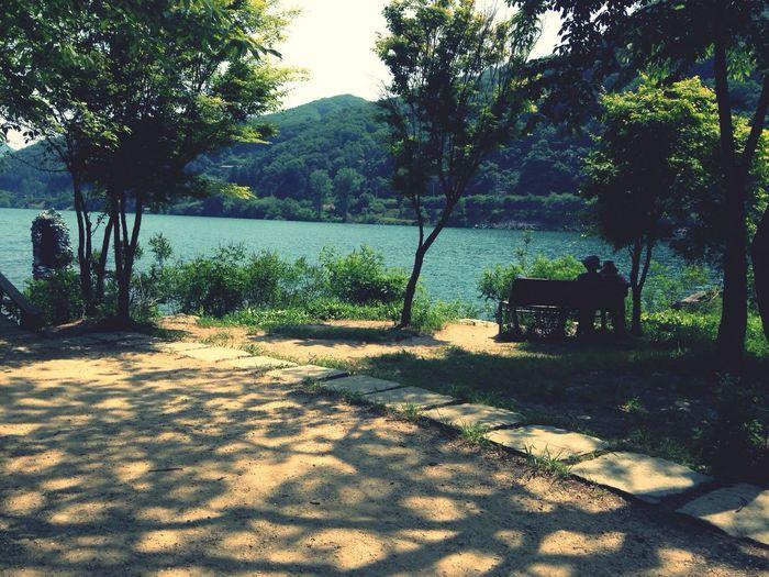 Jeju Honeymoon Island Wintersonata