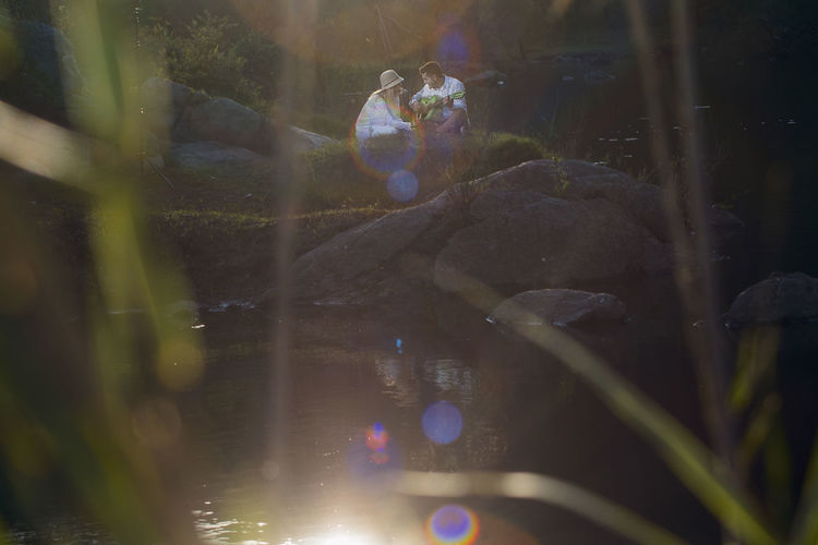 Kiss Love Wedding Wedding Photography Animal Animal Themes Animal Wildlife Animals In The Wild Beauty In Nature Day Fish Floating On Water Group Of Animals Growth Lake Marine Nature No People Outdoors Plant Reflection Swimming Transparent Vertebrate Water