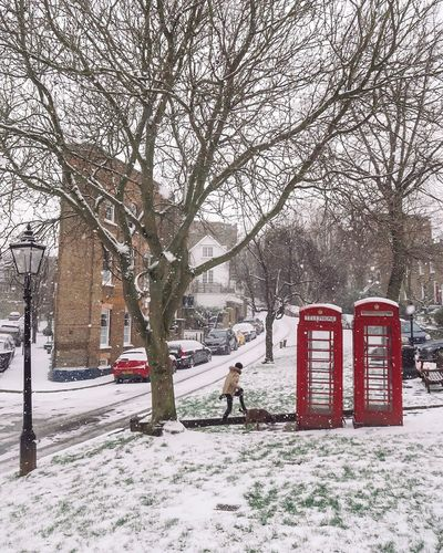 Phone Boxes in the Snow London Winter Snowmaggedon Red Phone Boxes Phone Box Snow