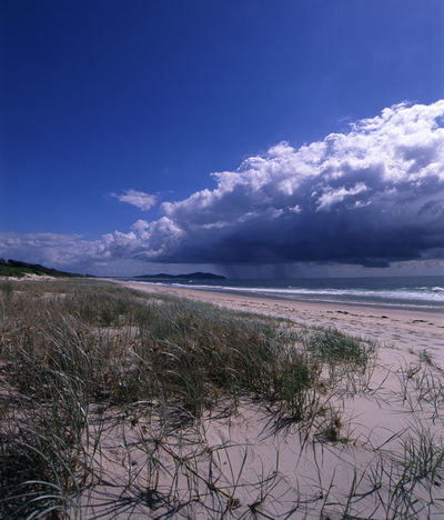 a rain cloud heading towards the beach Beach Blueclouds Cloud Coastline Distance Down Pour Downpour Dunes Grass Rain Rainy Sand Sea Storm Sun Sun Shower Sunny Sunshine Sunshower