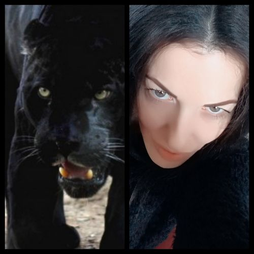 Panter Panter Panterka Black Color Beautiful Woman Looking At Camera Beautiful People Only Women Animal Themes Adults Only Beauty Animal One Young Woman Only One Animal Panteranera Selvatic Selfie ♥ Panter (; Girl Swagg ♥ Front View Women Young Women Fashion Girl Power Young Adult Human Eye