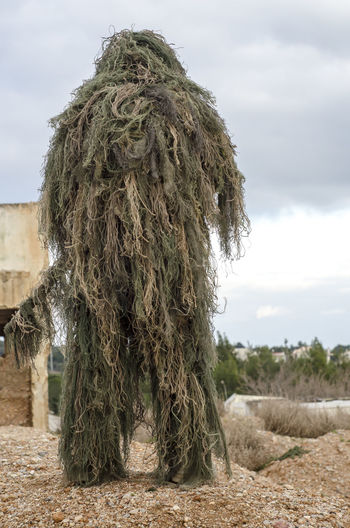 Sniper rifle camouflage Special Forces Armed Camouflage Check This Out G Ghillie Suit!!! M Military Mountain Mountains One Sniper, Violence Weather