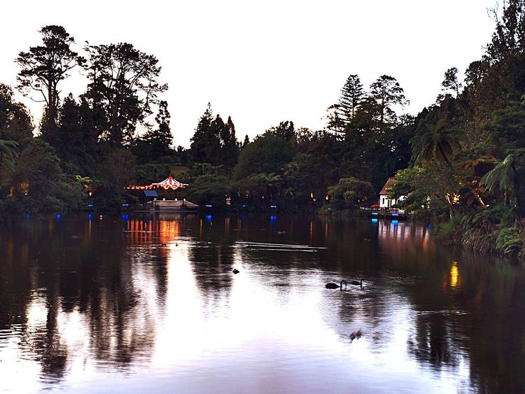 Another view over the lake at Pukekura Park, New Plymouth, New Zealand. Lake Lake View Reflections Water Reflections Lights Dusk Early Evening Buildings Lakeside New Plymouth New Zealand Landscape Shadows Pukekura Park Fine Art Photography