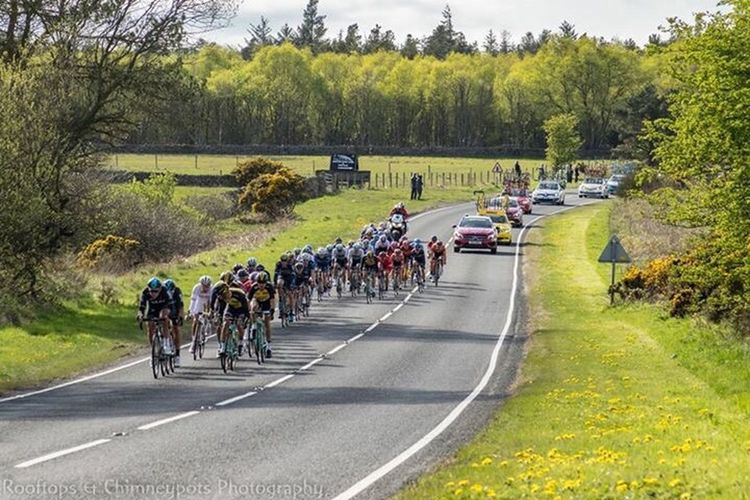 Sports Race Racing Bicycle Tree Large Group Of People Riding Road Competition Real People People Outdoors Sportsman Sports Track Day Adult Adults Only Cycling Helmet Horse Racing Headwear Nature Sports Team Tour De Yorkshire Event Cycling Race Le Tour
