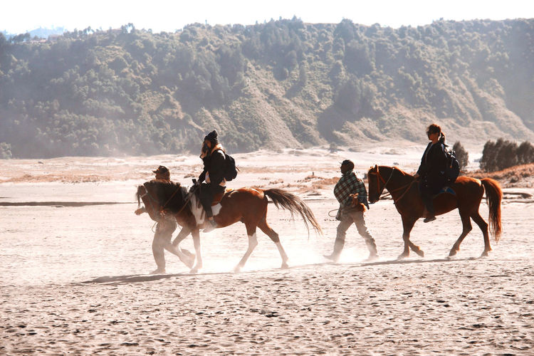 Group of people riding horse