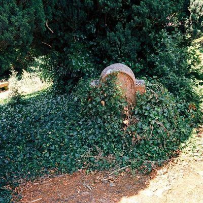 Another grave Kells Nexus5 Vscocam