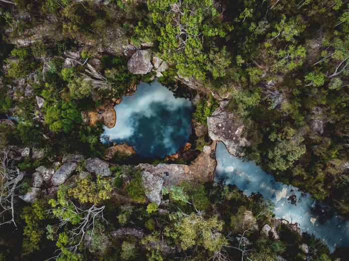 Heaven on Earth ❤️ Aerial shot of a pool in the Royal National Park, Sydney. Australia Australian Bushland Brook Creek DJI Mavic Air Adventure Aerial Beauty In Nature Bushland Bushwalk Destination Drone Photography Forest High Angle View Hiking Adventures Outdoors Pool Power In Nature Royal National Park Scenics - Nature Tranquil Scene Tranquility Tree Water Water Hole