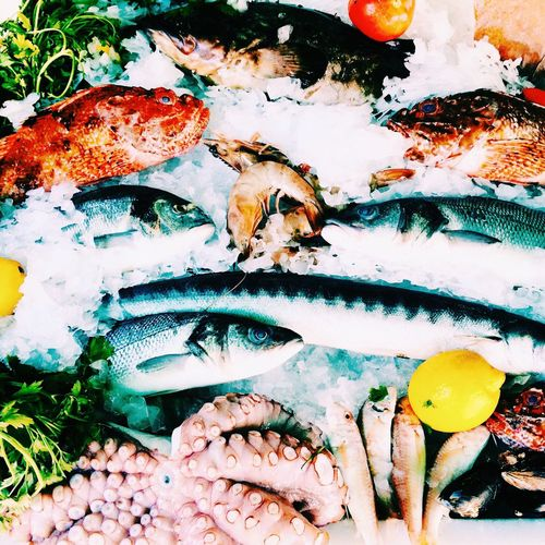 Seafood on crushed ice