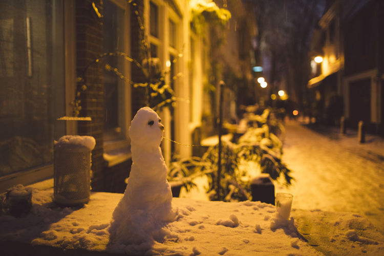 Christmas Haarlem Netherlands Weather Winter Animal Themes Animals In The Wild Authentic Bird Cold Temperature Domestic Animals Illuminated Mammal Nature Night No People One Animal Outdoors Pets Rare Snow Snowing Snowman White Winter Shades Of Winter HUAWEI Photo Award: After Dark Holiday Moments