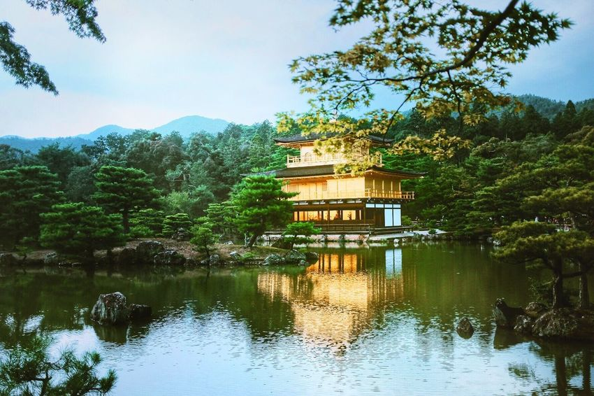 Golden Pavilion  Architecture Tree Building Exterior Built Structure Reflection Water Day Outdoors No People Nature Waterfront Lake Sky Beauty In Nature Travel Destinations Mix Yourself A Good Time