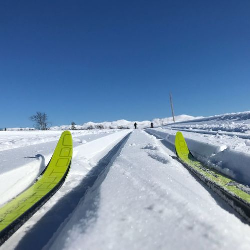 A perfect day Cross Country Skiing Snow Winter Cold Temperature Weather Nature Clear Sky White Color Day Beauty In Nature Blue Copy Space Tranquility Tranquil Scene Outdoors Sunlight The Great Outdoors - 2018 EyeEm Awards The Great Outdoors - 2018 EyeEm Awards