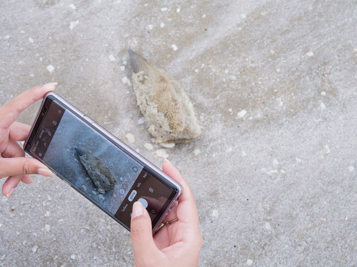 Midsection of person using mobile phone at beach