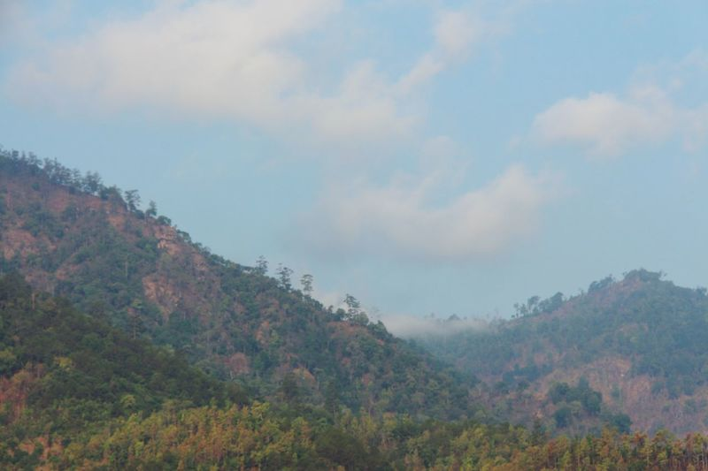 Mountains Forest Foggy Landscape Calm Tranquility Outdoors No People Fall Season in North Thailand South East Asia