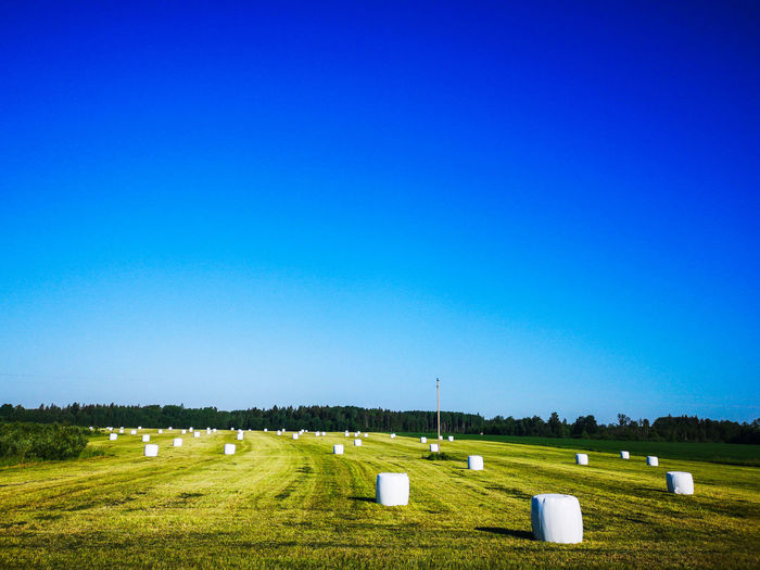 Clear Sky Rural