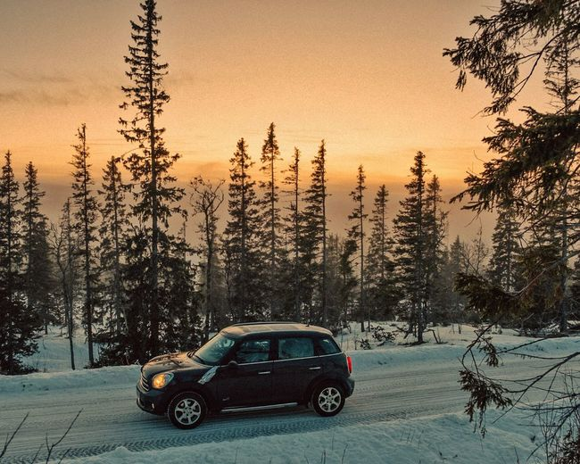 mini Cooper in snowscape EyeEm Selects Winter Cooper Mini Tree Sunset Car Sky Snow Covered Snowcapped Empty Road Weather Condition Car Point Of View 4x4 Snowfall Snow Vehicle Countryside Cold Cold Temperature Snowcapped Mountain