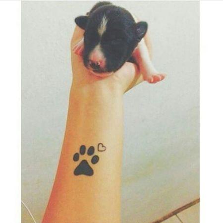 bebé💕 Babydoggy Dog Baby BB