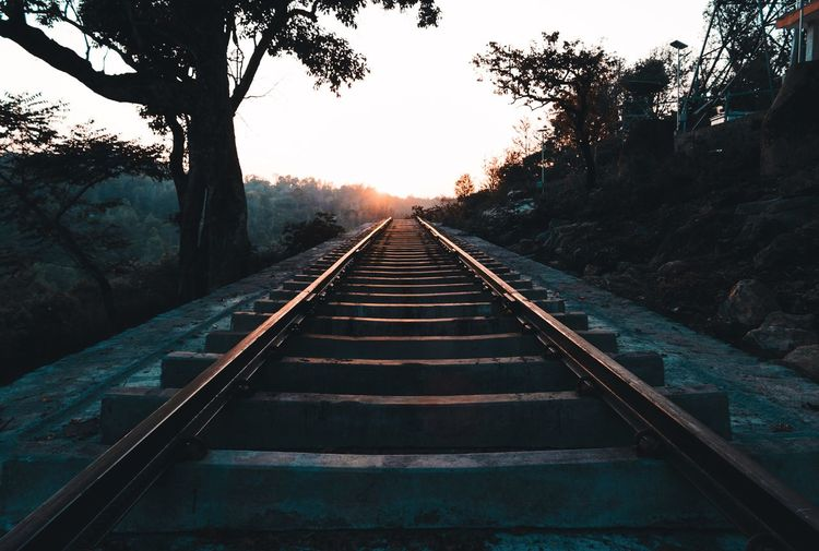 a piece of track out of nowhere .. Travel Travel Destinations Perspective Sunrise Adventure Nature Yercaud Tamilnadu Travelling Bright Dawn Silhouette Taking Photos Leading Lines Remote Exploring Tree Railroad Track Sky vanishing point The Way Forward Treelined Parallel Rail Transportation Train Track Diminishing Perspective Straight Railway Track Railway Bridge Symmetry