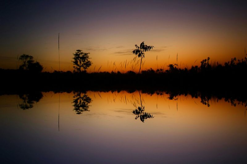 Reflection Water Sunset Nature Tree Silhouette Lake Sky Tranquility Travel Scenics Outdoors Beauty In Nature Landscape Vacations No People My Year My View People Silhouette Tree Beauty In Nature Landscape_Collection Landscape Nature Photography Landscapes With WhiteWall Canon_official