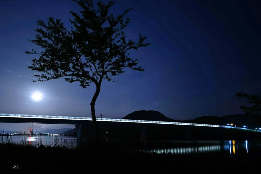 Fullmoon Nightphotography Darkness And Light Landscape Reflection Reflection_collection Love_blue From My Point Of View Highway Light And Shadow Taking Photos Hagging A Tree Silhouette Kagoshima Good night 🌕 🙋