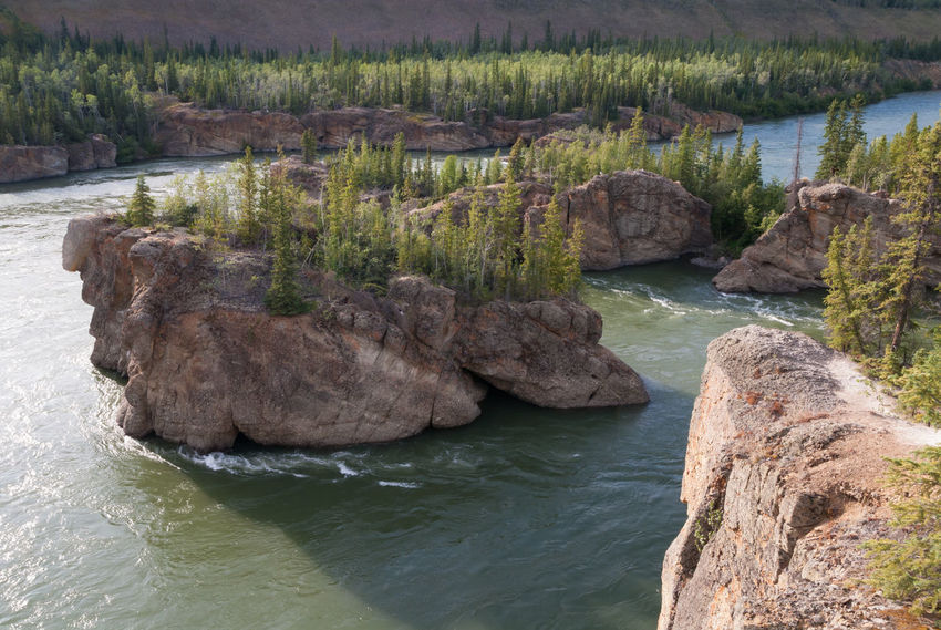 Five Finger Rapids on Yukon river in Canada Beauty In Nature Canada Cliff Cliffs Five Finger Rapids Forest Landscape Nature No People North Outdoors Rapids Remote River Spruce Summer Taiga Tranquility Travel Tree Water Whitewater Wilderness Yukon Yukon River