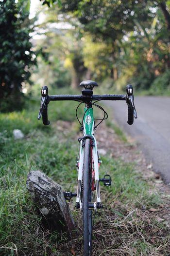 Road bike on