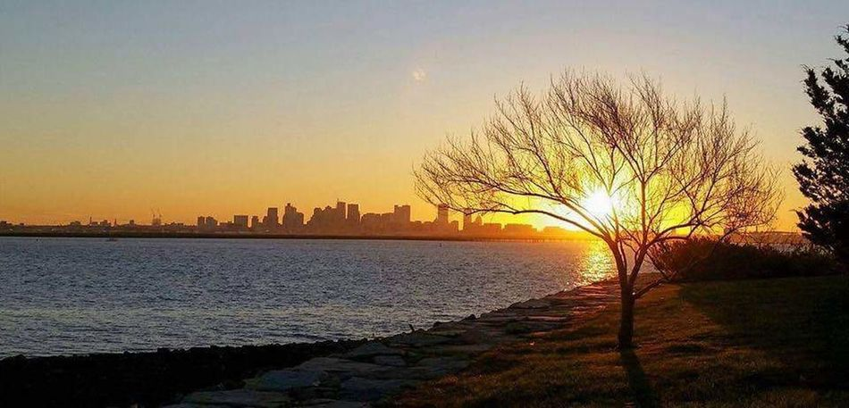 Sunset Tree Sky Silhouette No People Outdoors Scenics Landscape Boston Harbor Deer Island Sea Water Nature Travel Destinations Beauty In Nature City Day