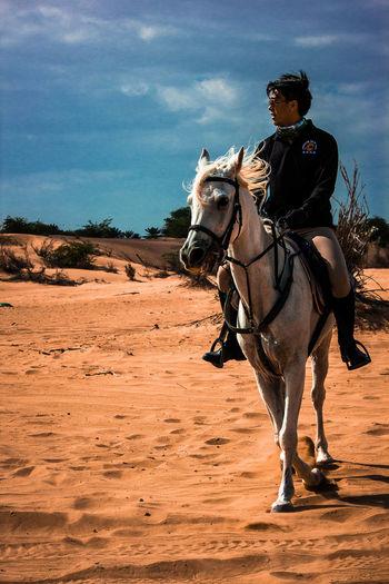 Desert Full Length Horse Riding Horses One Animal Outdoors Riding