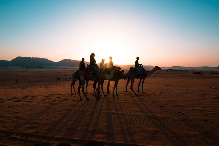 People riding camel on sand in desert at wadi rum against clear sky