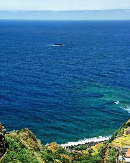 Sea Day High