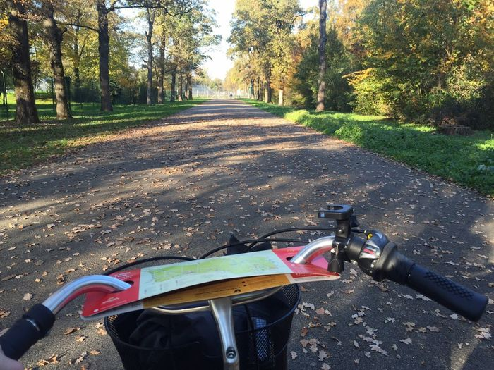 Bicycle Monza Riding Personal Perspective Cycling