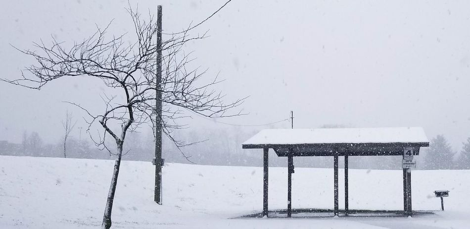 Park shelter in the snow Picnicinthepark Snow Park Shelter Snowflake Snowing Cold Temperature Winter Frozen Rural Scene Sky Weather Condition