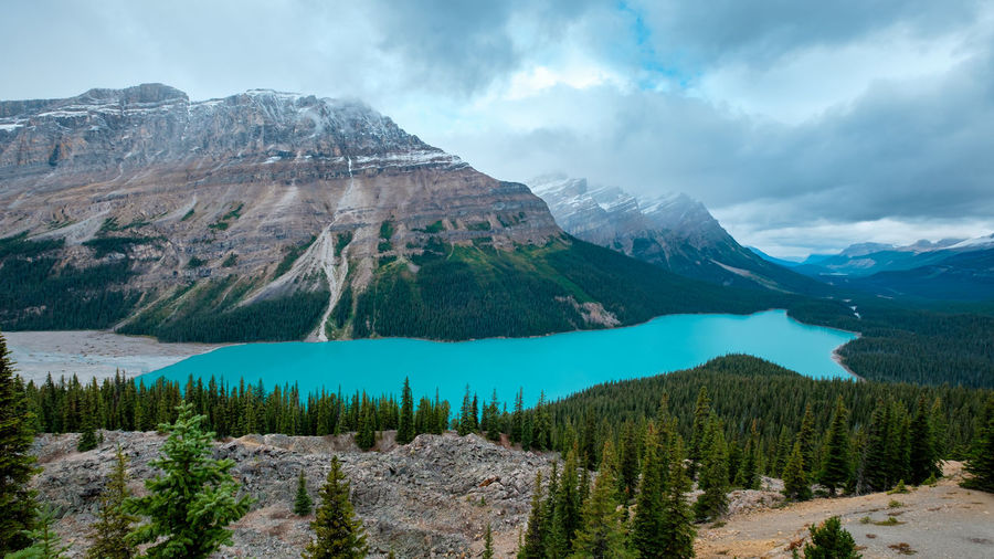 A fantastic lake that fed from glaciers water between mountains, peyto lake, banff, canada.
