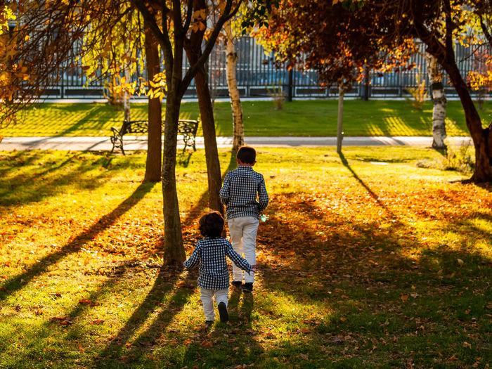 Rear view of siblings walking on grassy field