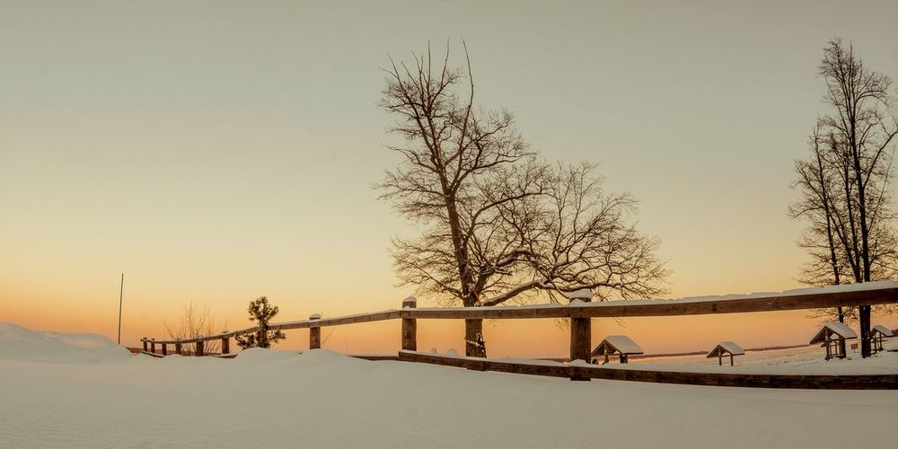 ... Tree Cold Temperature Nature Bare Tree Railing Winter Snow Clear Sky Sky Real People Outdoors Leisure Activity Beauty In Nature Sand Scenics Sunset Day Shades Of Winter