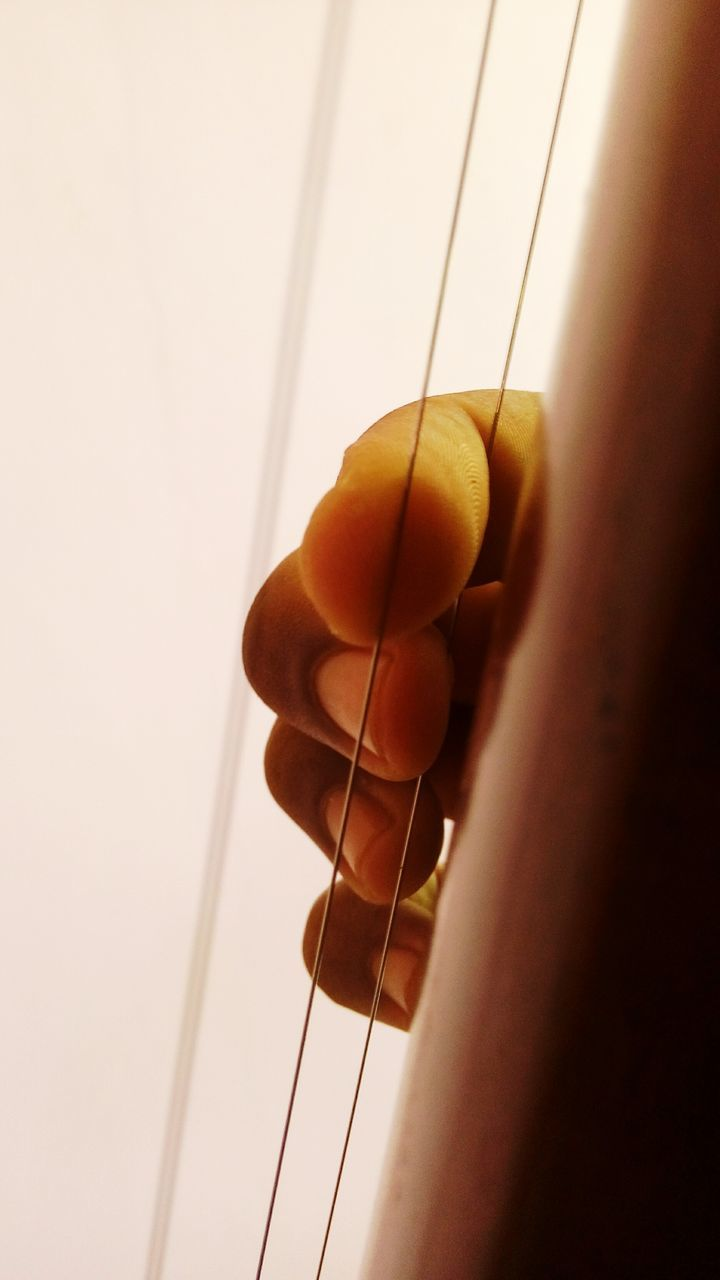 human hand, one person, human body part, holding, musical instrument, music, musical instrument string, indoors, real people, close-up, men, fretboard, sky, day, people