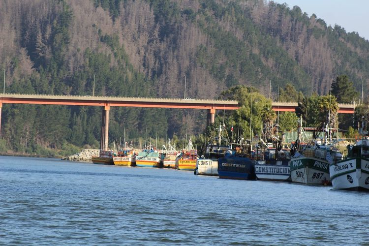 Rio Maule 🚣 Paisaje Naturaleza Y Hombre
